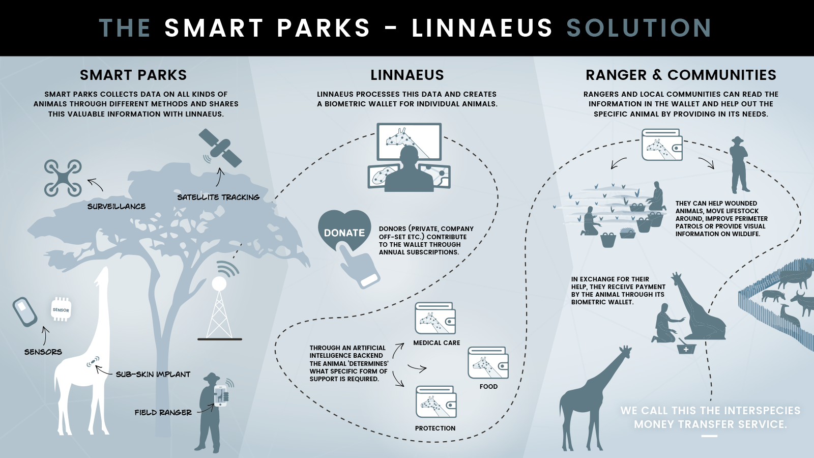 smart parks 4