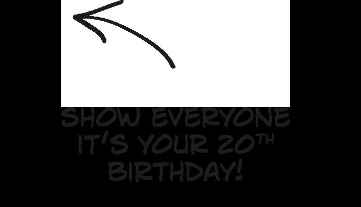 20th birthday vannelle
